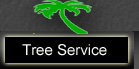 Tree Service in Vero Beach FL
